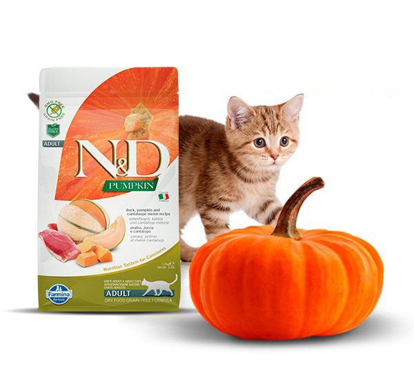 Karmy dla kotów Farmina