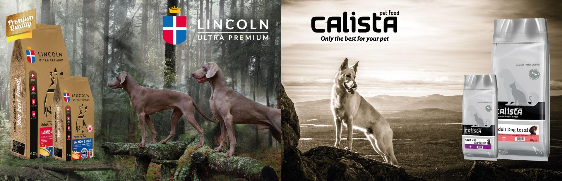Karma dla psów Lincoln